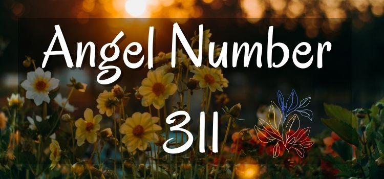 Angel Number 311